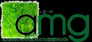 AMG Renovables quiénes somos